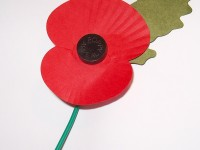 Remembrance Day – 11th November 2014